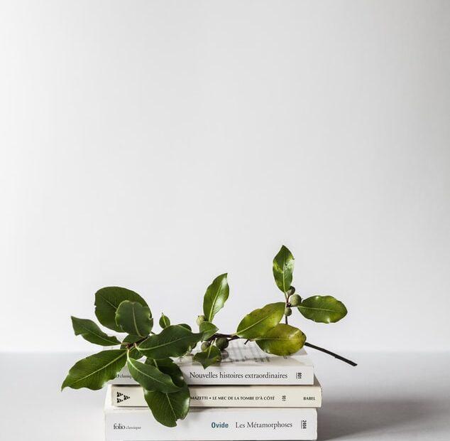 blogul cu carti
